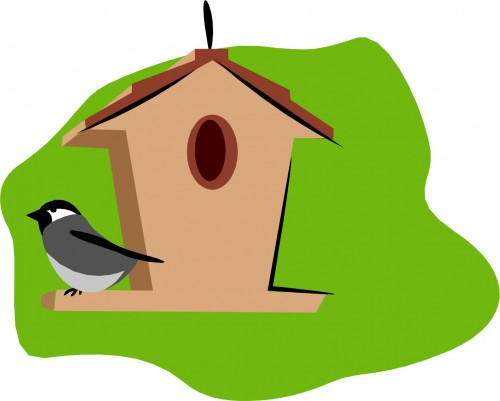 Image result for birdhouses cartoon