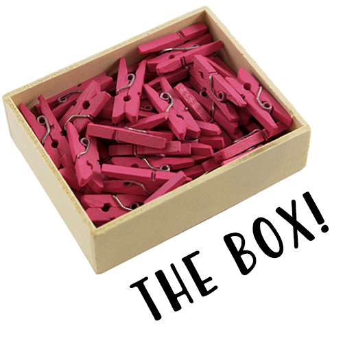 pink wooden clips