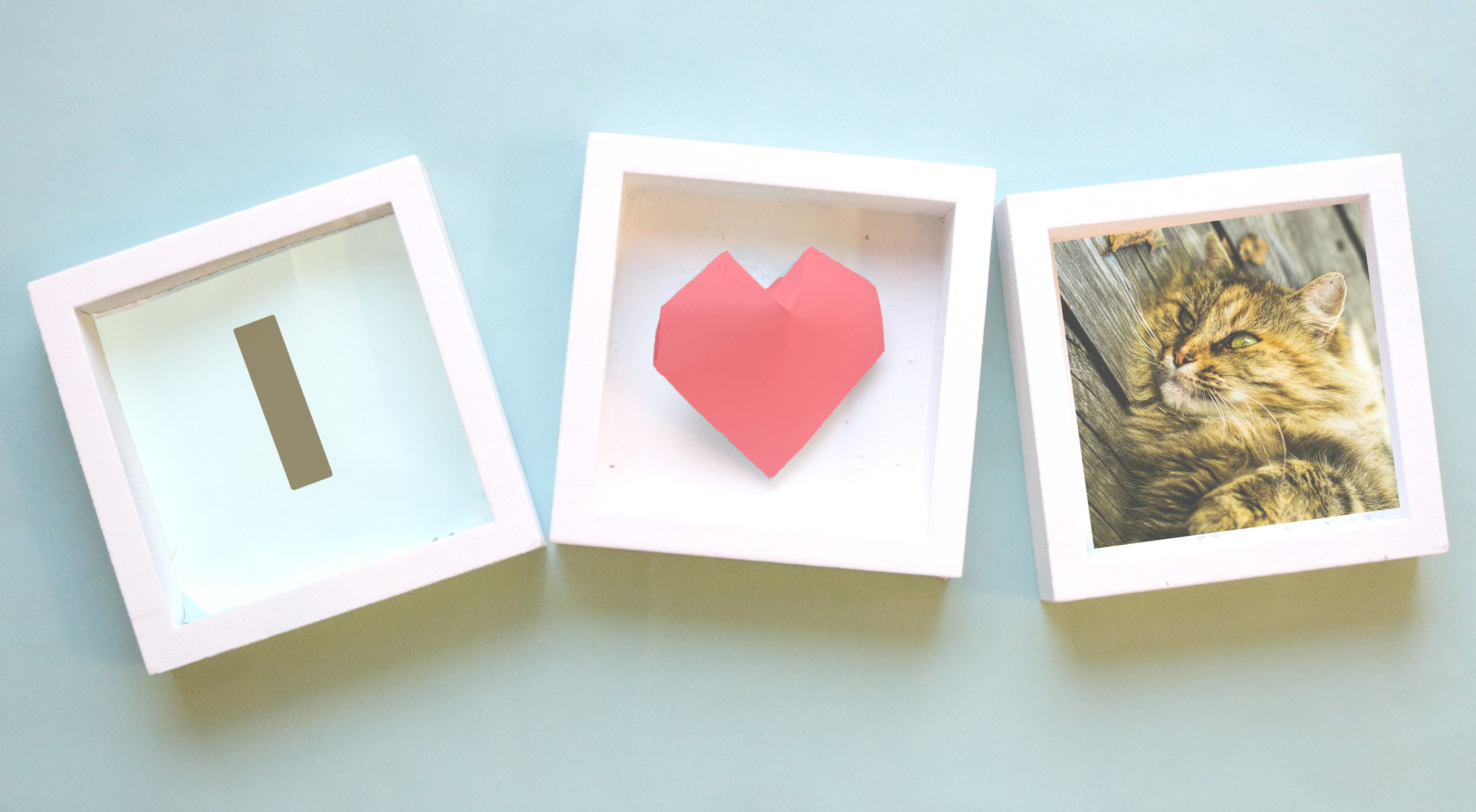 Picture frames, I heart cat