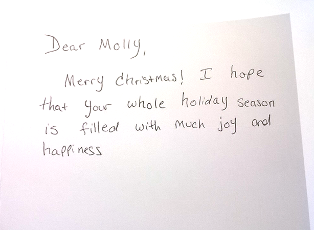 What to write inside of your christmas cards jam blog what to write inside your christmas cards dear molly merry christmas holiday m4hsunfo
