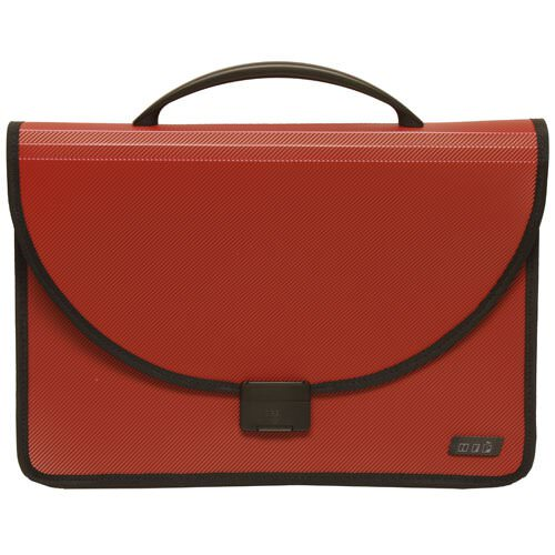 Plastic Briefcase with Handles - 14 x 9.5 x 4.5