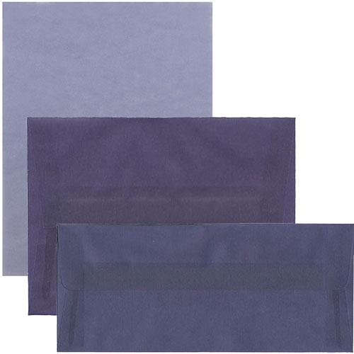 Wisteria Purple Translucent Vellum Envelopes & Pa
