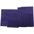Primary Blue Transcluent Envelopes & Paper