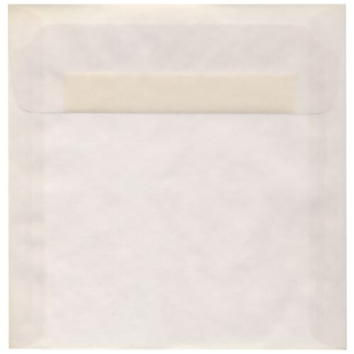 Clear 8 1/2 x 8 1/2 Square Envelopes