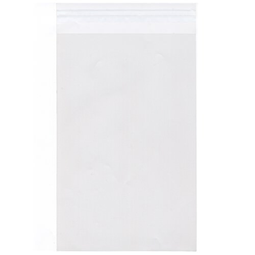 Clear 5 15/16 x 8 7/8 Envelopes