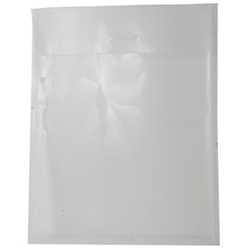 Clear 11 x 14 Envelopes
