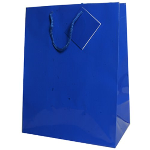 Blue Gift Bags with Handle