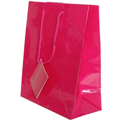 Pink Gift Bags with Handle