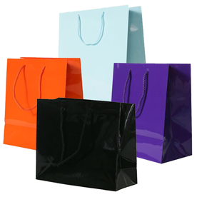 Glossy Bags
