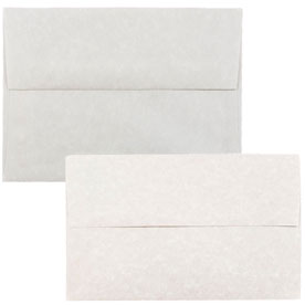 Pewter Recycled Parchment Envelopes & Paper