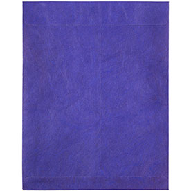 Blue Tyvek® Envelopes - 10 x 13