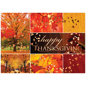 Blank Thanksgiving Card Sets