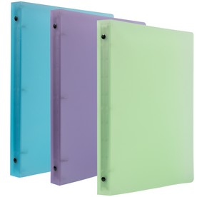 Frosted 0.75 Inch Binders