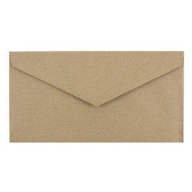 Brown Paper Bag Closeout Vflap (4 1/4 x 7 3/4)