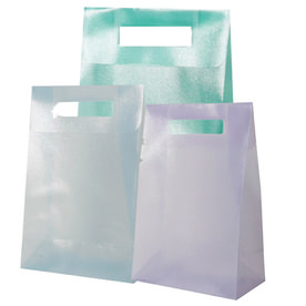 Frosted Lunch Bags
