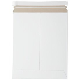 White 11 x 13 1/2 Envelopes