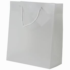 Clear Gift Bags with Handle
