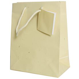Ivory Gift Bags with Handle