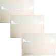 10x15 Closeout Envelopes